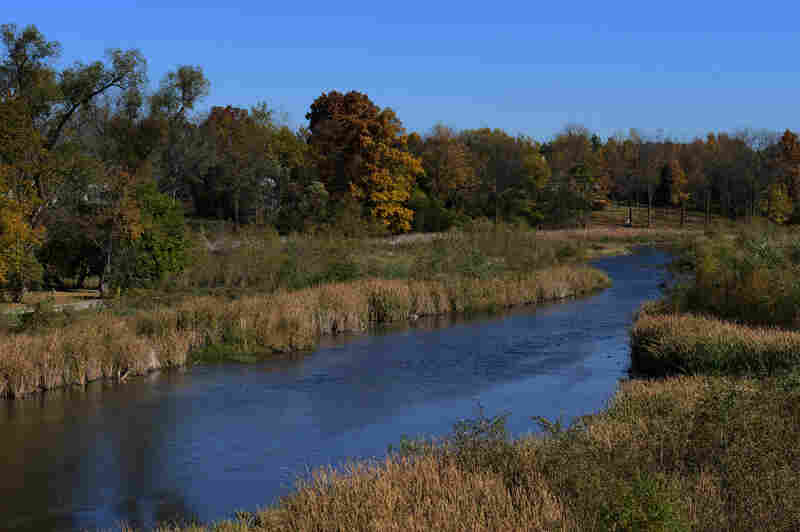 The Bark River was carved in Wisconsin's Ice Age, about 13,000 years ago, when gl