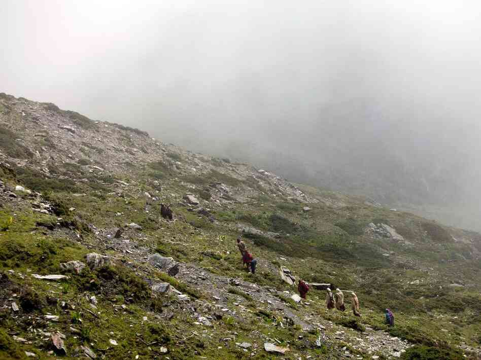 The festival takes place where the yaks roam, about 4,000 meters above sea level. Here, festival-goers return to their campsite after bleeding yaks.