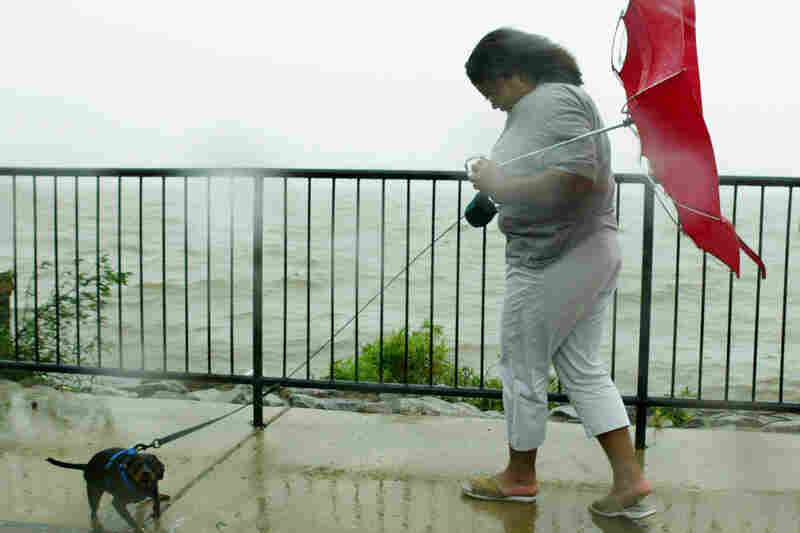 Tiffaney Battle (perfect last name) and her dog, Zach, versus Hurricane Isabel, Alexandria, Va., 2003.