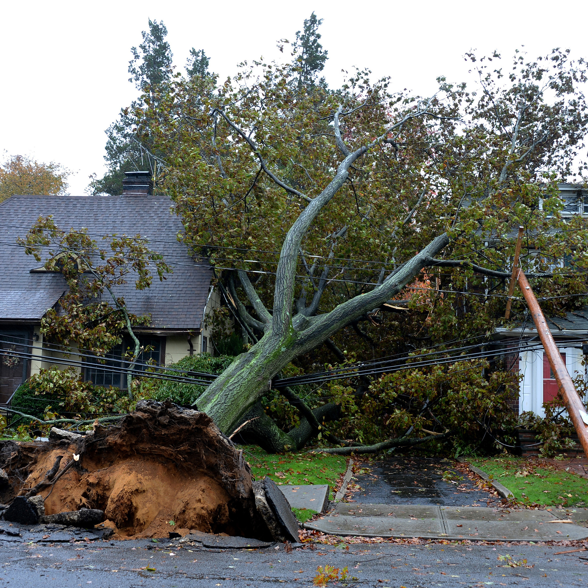 "A fallen tree and power line lie over homes in Garden City, N.Y., on Monday. Huricane Sandy still has 90 mph sustained winds with higher gusts. Shortly after it makes landfall, it's expected to transition ""into a frontal or wintertime low pressure system."""