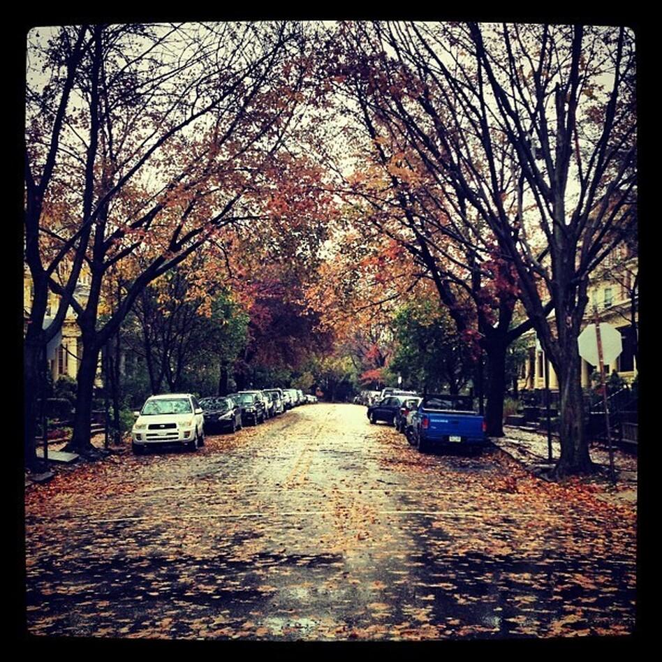Philadelphia after Superstorm Sandy.