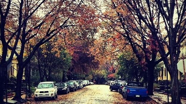 Philadelphia after Superstorm Sandy. (via Flickr)