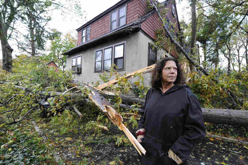 Arlene O'Dell stands in front of her home where several trees fell, one crushing her car, as a result of the powerful winds and rain of Superstorm Sandy on Tuesday in Sea Cliff, N.Y.