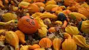 New Jersey Gov. Chris Christie 'Postpones' Halloween