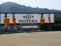 Banners at the entrance to the village of Bescanó announce the local theater's carrot-selling campaign, with the slogan