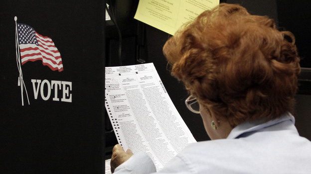 A voter reads her ballot as she prepares to cast her vote during the last day of early voting in Miami on Nov. 3. (AP)