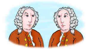 Linnaeus drawing doubles.