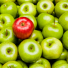 Red apple among green ones