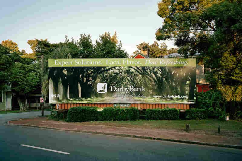 Billboard With Trees, Savannah, Ga., 2008
