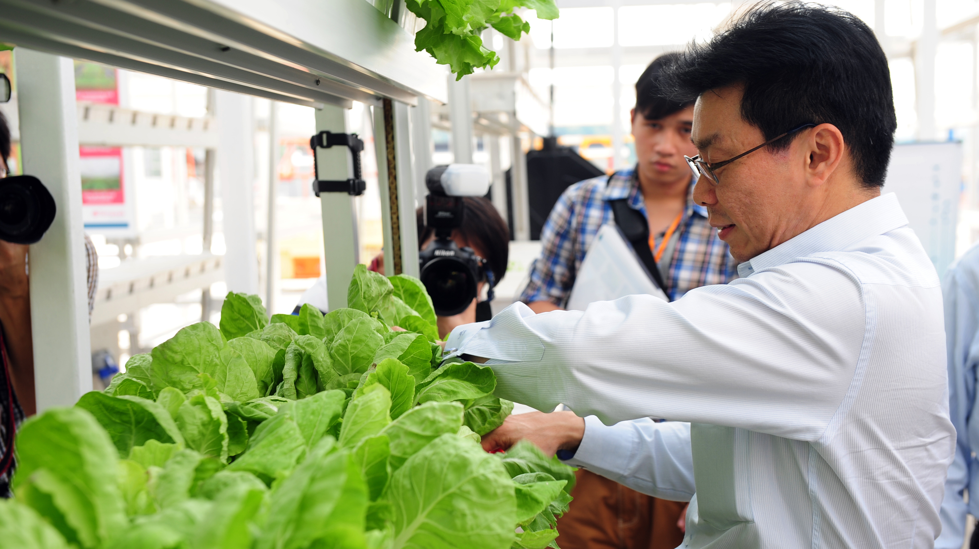 Senior Minister of State Lee Yi Shyan inspects the Chinese vegetables at Singapore's first commercial vertical farm.