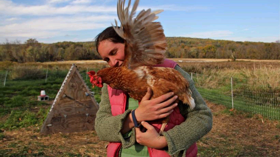 Chris Costa and one of her chickens on her farm in Downingtown, Pa. Costa and her partner, T.J., found the land for this farm through a sustainable agriculture program. (WHYY)