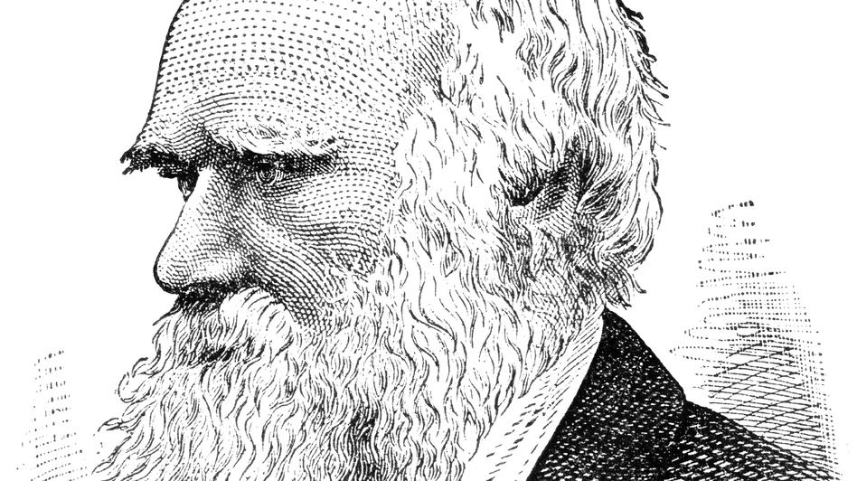 Charles Darwin (iStockphoto)