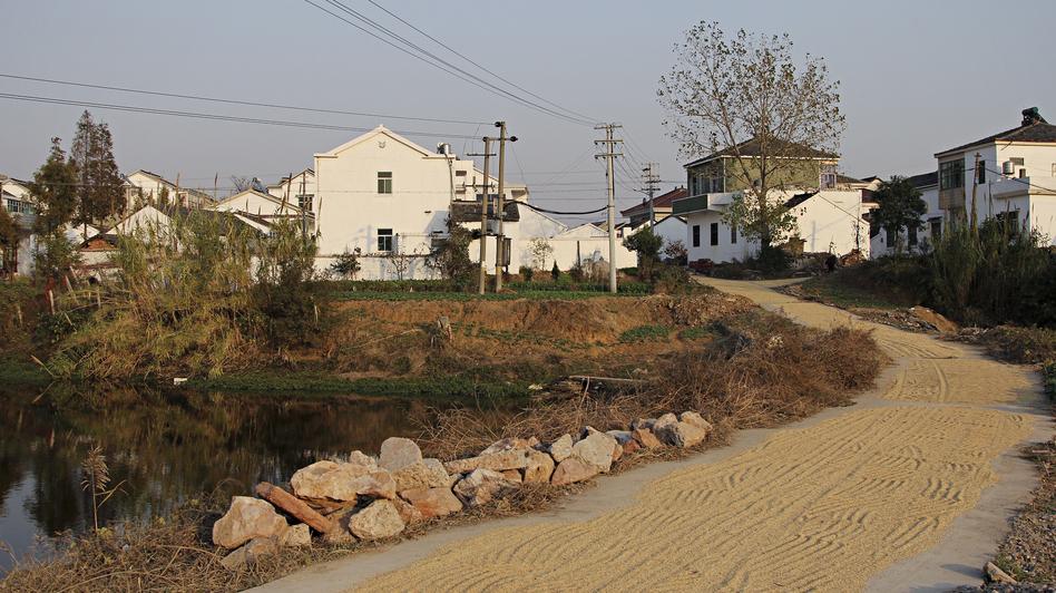 Dongjianggai, a farming village, lies about 200 miles northwest of Shanghai. (NPR)