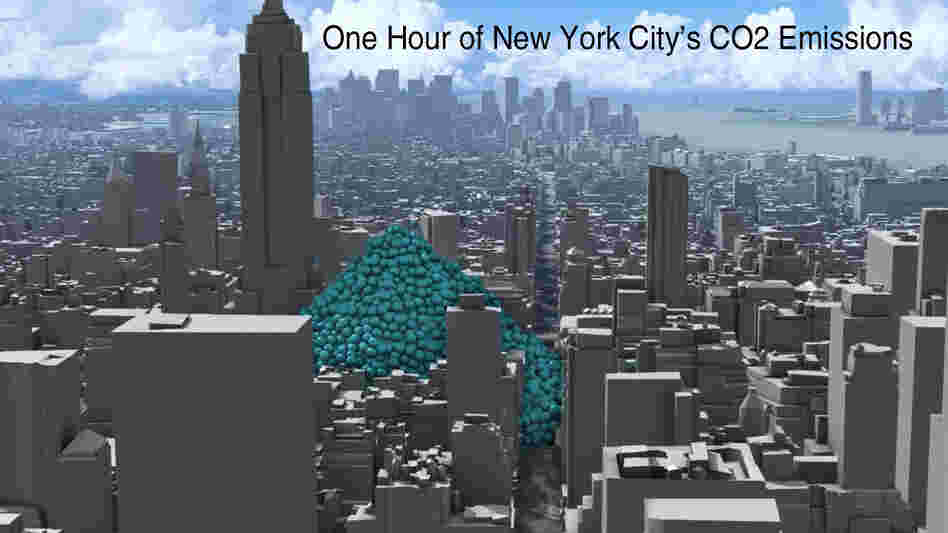 One Hour Of NYC's Carbon Dioxide Emissions