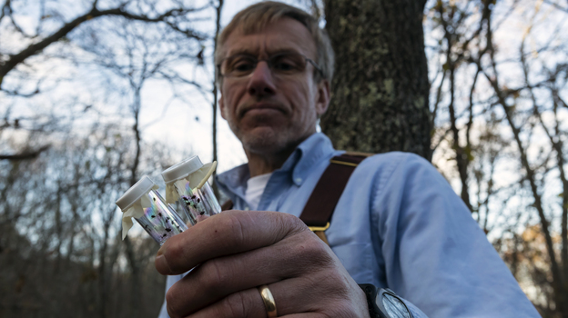 """Last year, Tom Mather caught 15,000 deer ticks in the woods of southern Rhode Island. """"People really need to become tick literate,"""" the University of Rhode Island researcher says. (Brian Mullen for NPR)"""