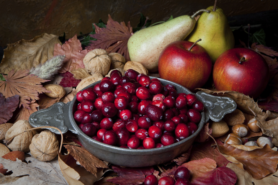 Hunting and gathering music for your Thanksgiving holiday? Check out our playlist.