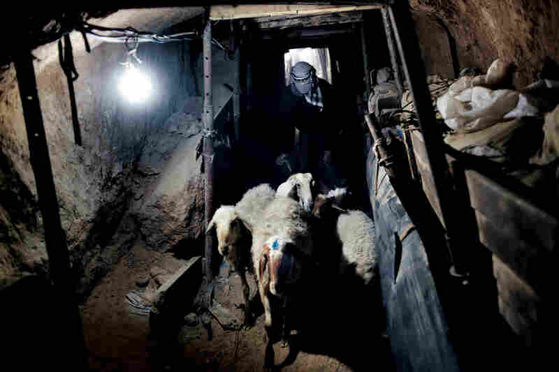 Lamb is a luxury most Gazans can afford only on important Muslim holidays. With many farms devastated by war, and with other land lying unproductive in areas restricted by Israel, livestock comes in by tunnel from Egypt.