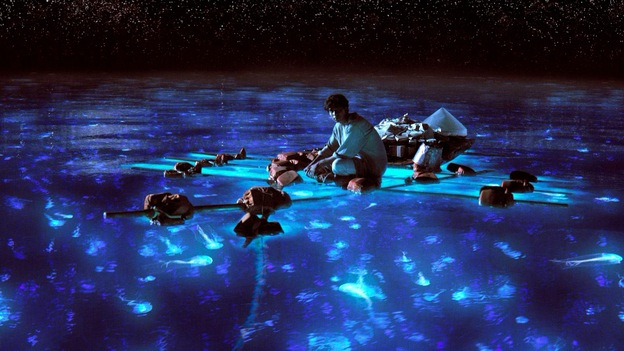 Pi takes in the bioluminescent wonders of the sea. (Twentieth Century Fox)
