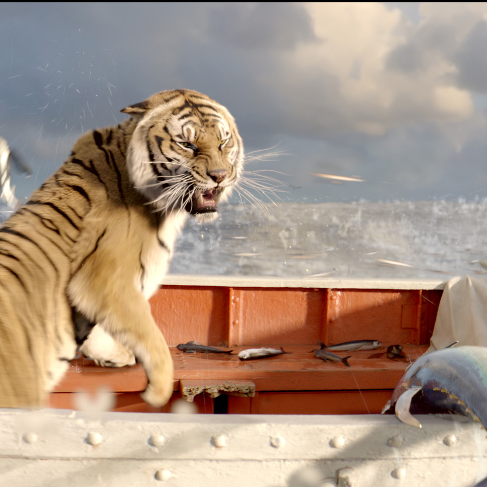 39 life of pi 39 life changing for young star ncpr news for Richard parker life of pi