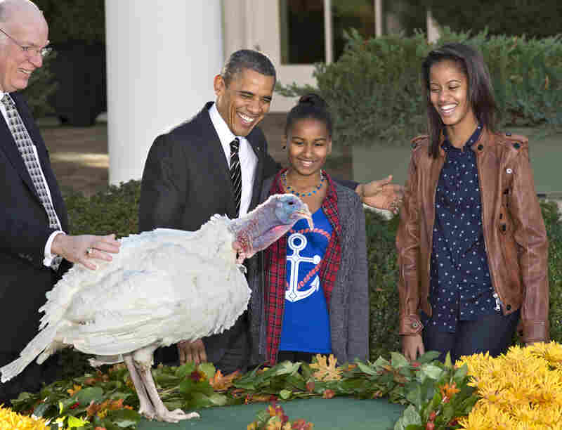 "President Obama, with daughters Sasha, center, and Malia, right, pardons the turkey, ""Cobbler"" at the White House in Washington on Wednesday."