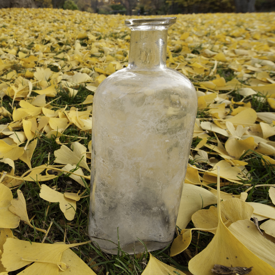 Bottles like this 90-year-old one were filled with seeds and sand, then buried by William Beal. Researchers periodically unearth a bottle and plant the seeds to see if they grow.