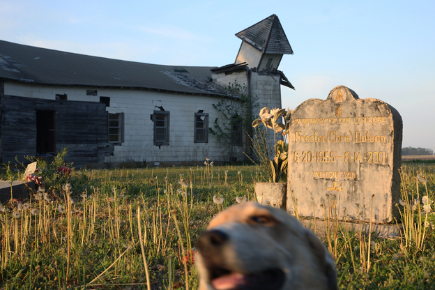 """The Peter's Rock Church in Marianna is no everlasting monument; it has been left to rot, its windows broken, its steeple fallen over. Still, I found it beautiful. Kneeling in the cemetery, listening to the insects hissing, watching as a dog wandered past, I felt history coming at me from all sides."" (National Geographic)"