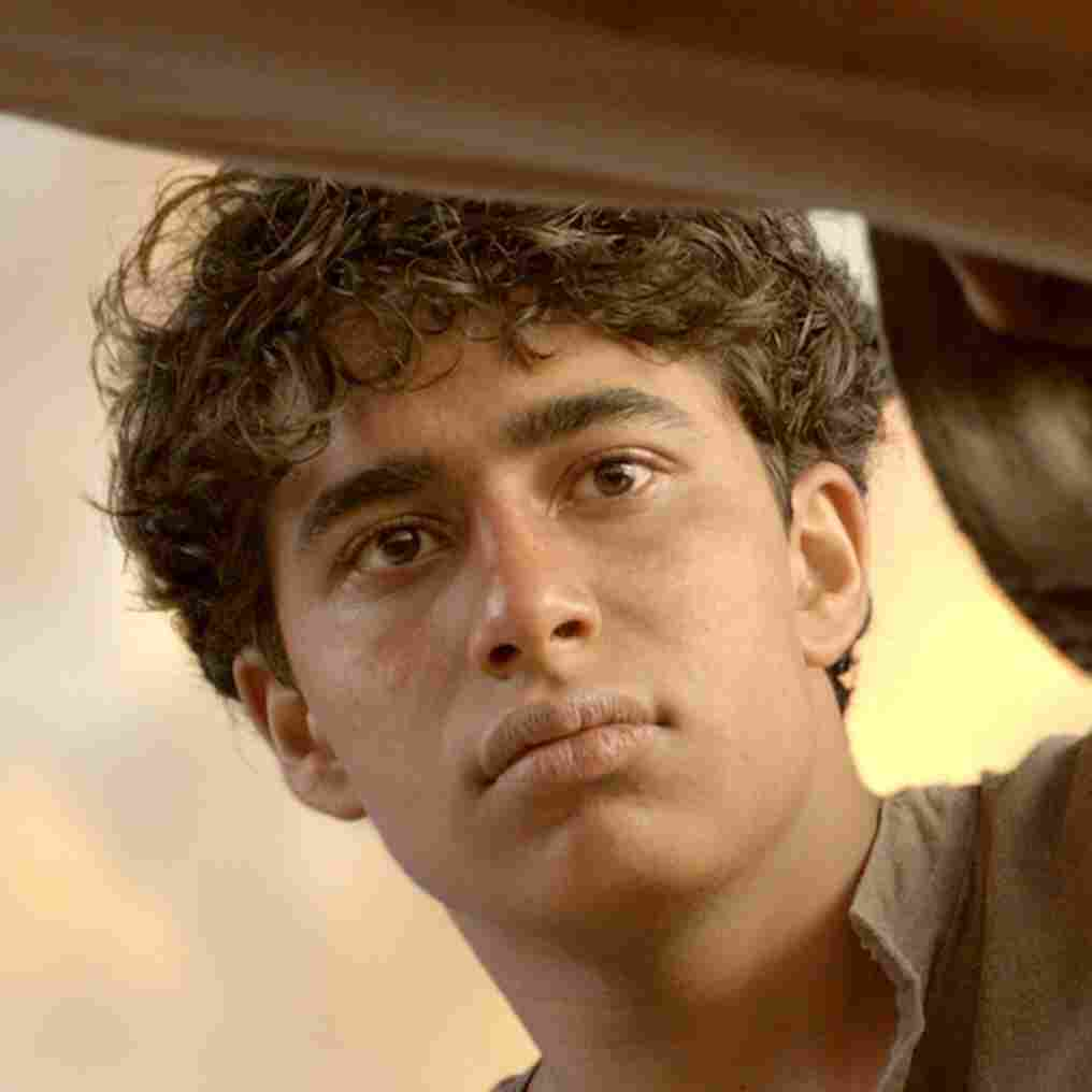 A Boy, A Boat, A Tiger: Reflecting On 'Life Of Pi'