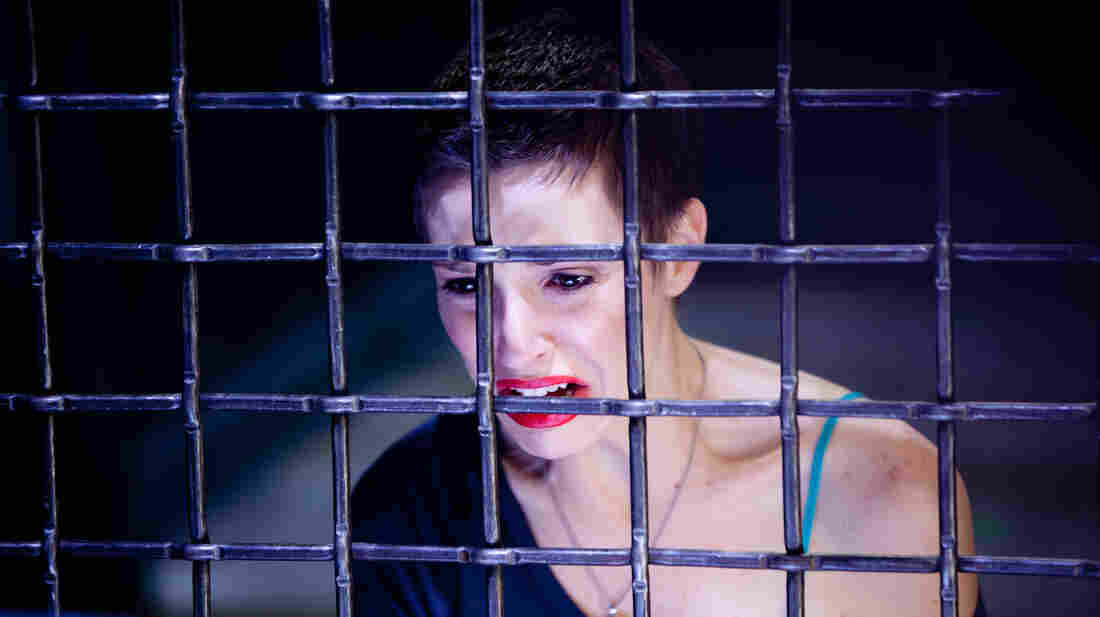 "Elena (Emma Fitzpatrick) is captured by a serial killer known as ""the Collector"" and must fight for her life to escape."