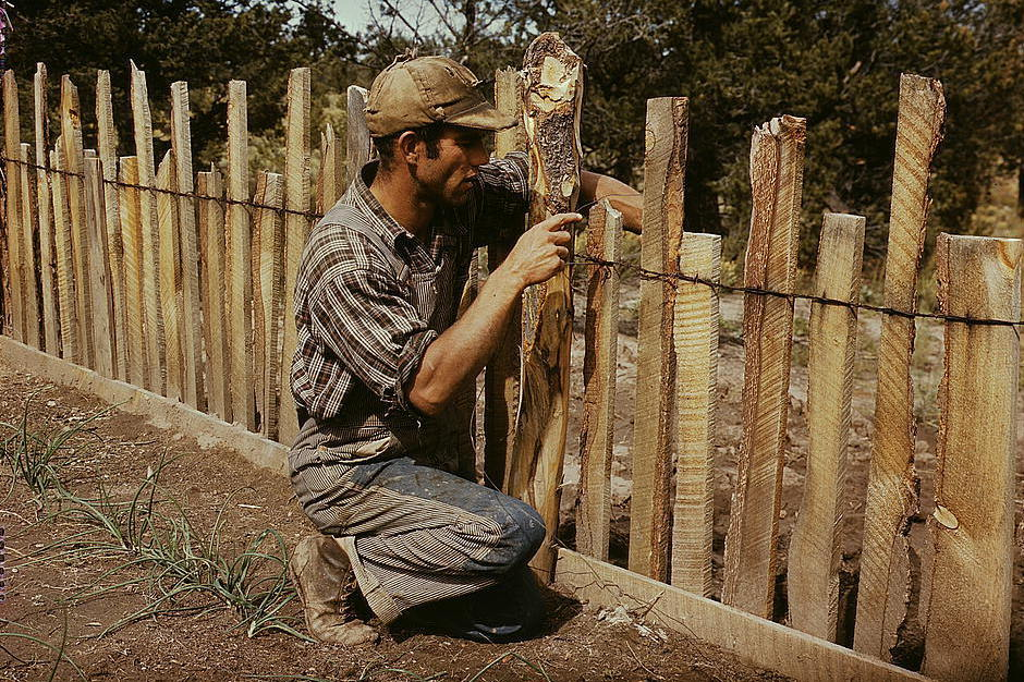 Jack Whinery, homesteader, repairing a fence, 1940