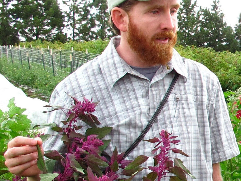 Gardiner Kevin Murphy with a goosefoot plant, the seeds of which we eat as quinoa. (courtesy Kevin Murphy)