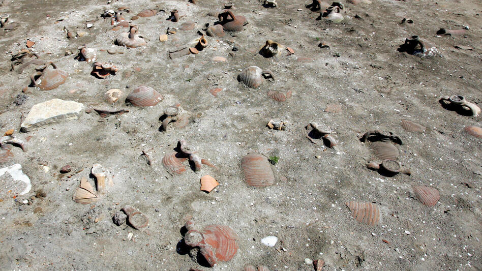 The archaeological finds include millions of shards of pottery. (AFP/Getty Images)