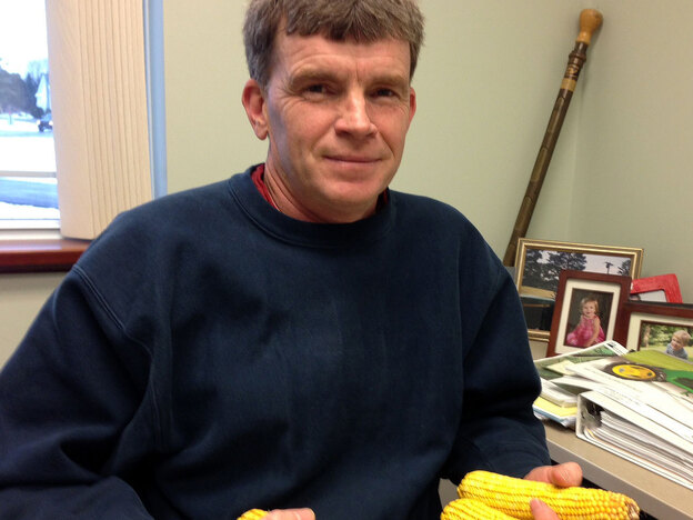 Clark Putman, the local director of the USDA's Farm Service Agency, keeps ears of corn on his desk as a reminder of how the high cost of feed is threatening dairy farmers' livelihood.