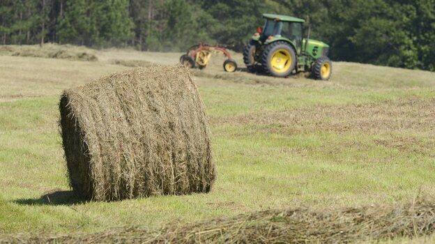 That's a valuable commodity: A hay bale at a farm in Eatonton, Ga., earlier this year. (EPA /Landov)