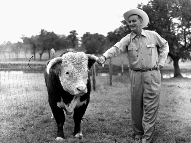 Lyndon Johnson, then the vice president-elect, with a prize-winning Hereford bull on his ranch near Johnson City, Texas, in 1960. Linguists say the twang that has long been synonymous with Texans is fading.