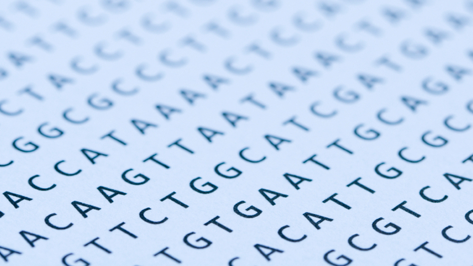 When researchers looked at the genetic sequences of 179 individuals, they found far more defects in the patterns of As, Ts, Gs, and Cs than they expected. (iStockphoto.com)