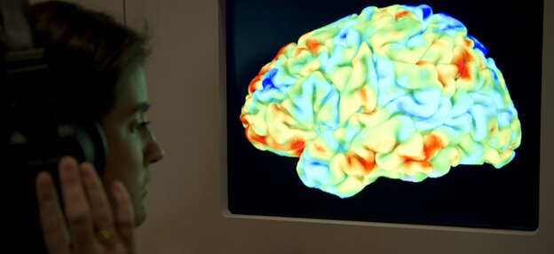 """A visitor to the Wellcome Collection's 2012 exhibition """"Brains: The mind as matter"""" looks at a functional magnetic resonance image (fMRI) showing a human brain as it listens to Stravinsky's """"Rite of Spring"""" and Kant's third Critique."""