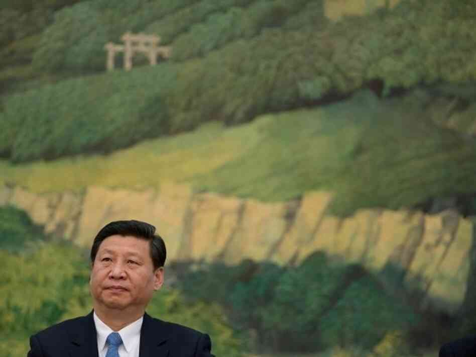 Xi Jinping, China's newly appointed leader, at the Great Hall of the People in Beijing.