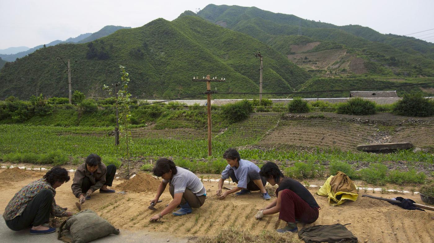 How To Say Good Morning In Korean Audio : Hunger still haunts north korea citizens say npr
