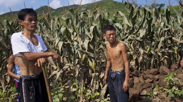 The U.N. says food supplies in North Korea have increased, but citizens who spoke to NPR say many people are going hungry. In this photo from Aug. 13, workers stand next to a field that was damaged by flooding in Songchon County, North Korea. (AP)