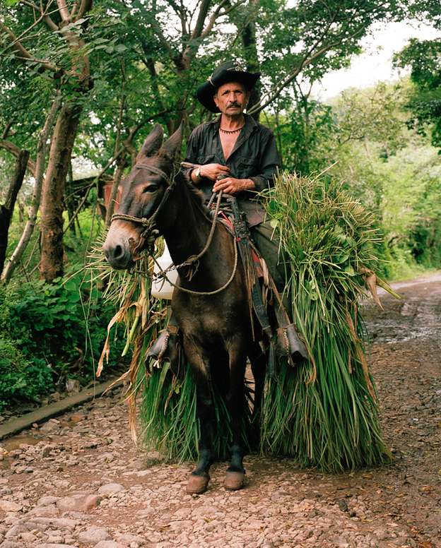 Don Antonio, a farmer and resident of Valle Nuevo, El Salvador.