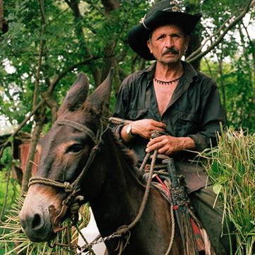 Don Antonio, a farmer and resident of Valle Nuevo, El Salvador.