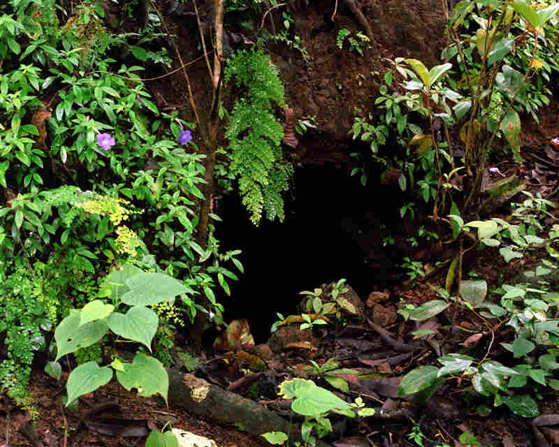 A cave that families hid in during the war.