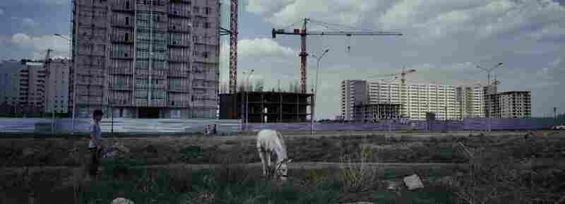 Horses graze near a construction site in Astana, Kazakhstan, 2012. Astana is a growing new capital in oil-rich Kazakhstan. Kazakhstan's President Nursultan Nazarbayev moved the capital from Almaty to Astana in 1997.