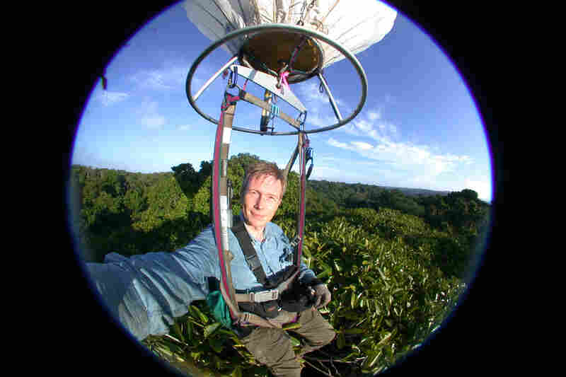 "Here, researcher Maurice Leponce hangs from the ""canopy bubble."""