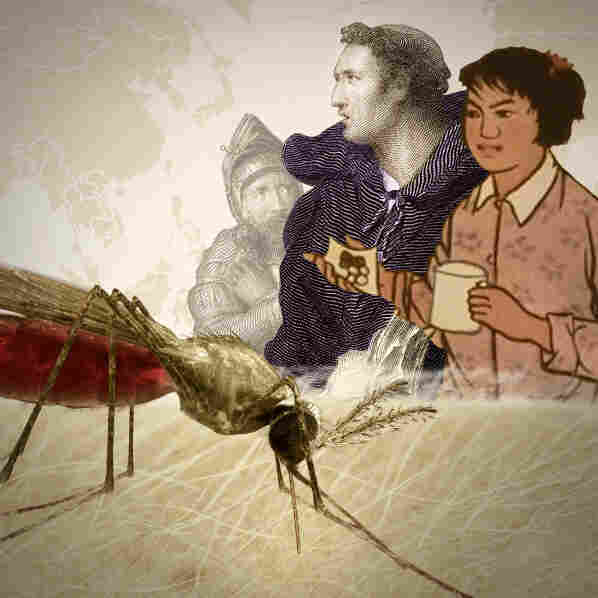 Herbs And Empires: A Brief, Animated History Of Malaria Drugs