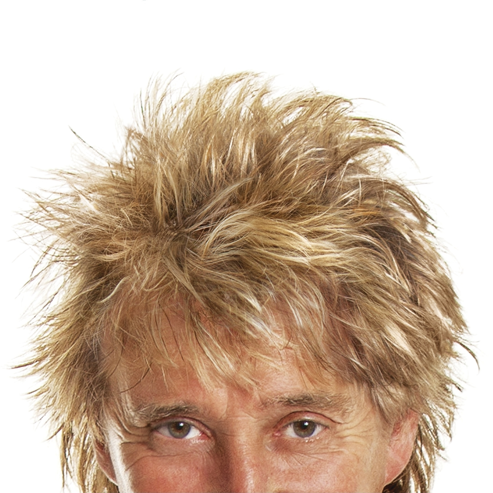Rod: The Autobiography by Rod Stewart.