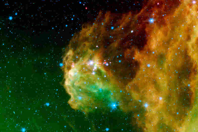 """Infant stars 'hatching' in the head of the ... constellation Orion."""