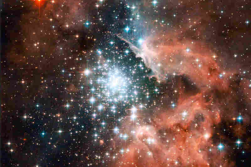 """""""Thousands of sparkling young stars are nestled within the giant nebula NGC 3603, one of the most massive young star clusters in the Milky Way Galaxy."""""""