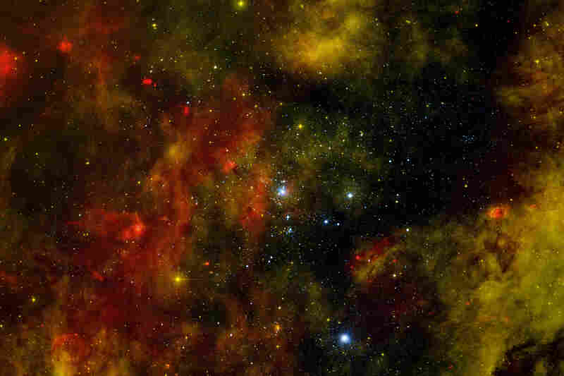 The star cluster Cygnus OB2, home to many young stars.