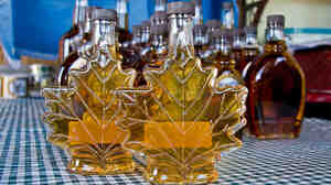 Fresh maple syrup in two maple leaf-shaped bottles, with other bottles behind. Police officials have arrested three men who allegedly siphoned the sweet treat from 16,000 storage barrels stored in a Quebec warehouse.